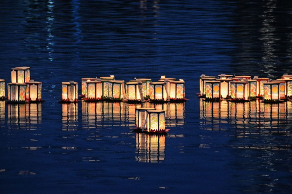 Lotus & Lanterns on Shinobazu Pond