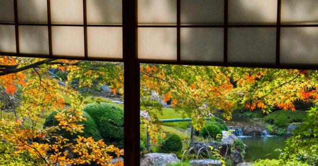 Taizo-in Temple at Kyoto